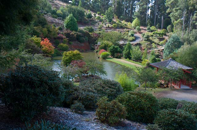 One of the many themed gardens within The Emu Valley Rhododendron Garden